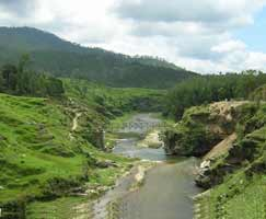 Honeymoon Tour To Binsar