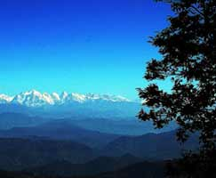 Binsar Honeymoon Tour Package