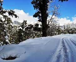 Binsar Travel Package