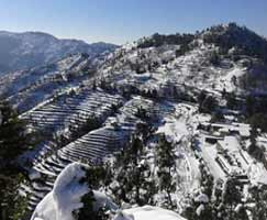 Binsar Honeymoon Tour